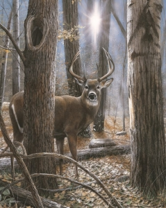Woodland Sentry Buck-SOLD